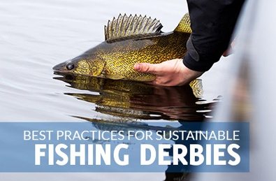Best practices for fishing derbies